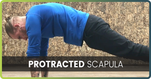 how to handstand protracted scapula