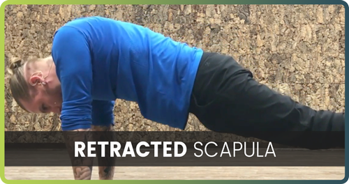How to handstand retracted scapula