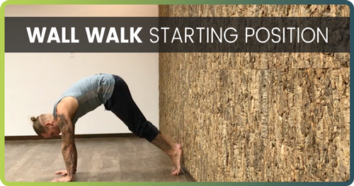Handstand Drills Wall Walk 1