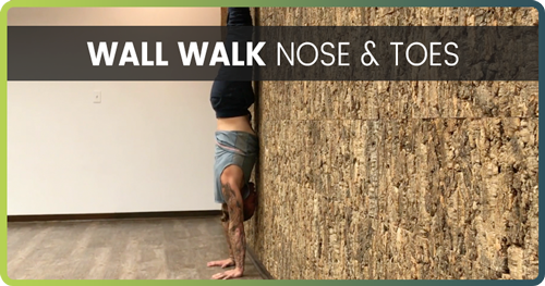 Handstand Drills Wall Walk 4